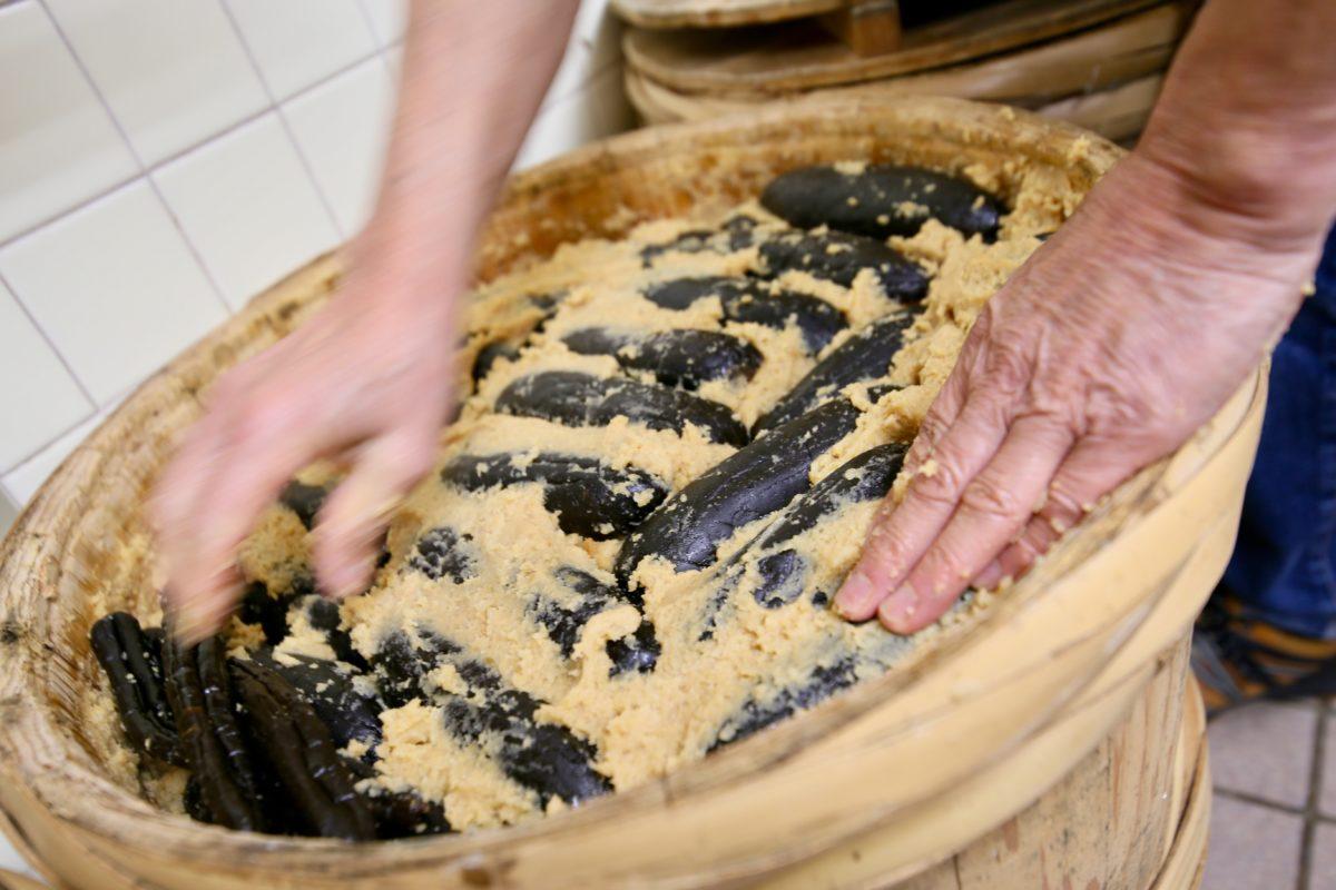 漬物を知る為に発酵を学ぶ
